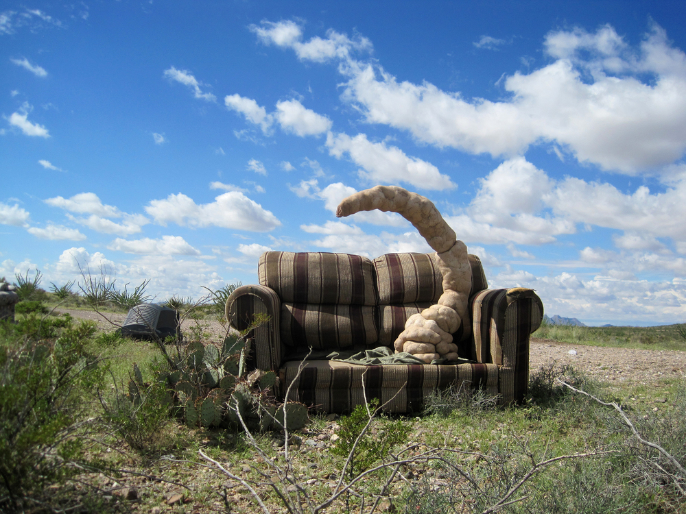 lost and found in the desert (1)