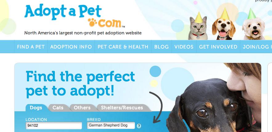 adopt-a-pet-rectangle.png
