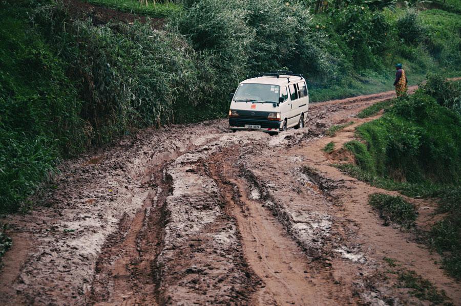 mountain-gorillas-uganda-002.jpg