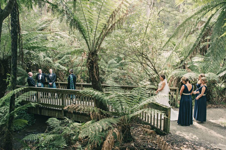 wedding-lyrebird-falls-wedding-reception-venue-032.jpg