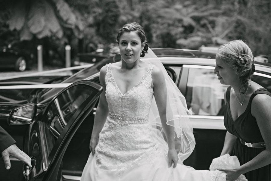 wedding-lyrebird-falls-wedding-reception-venue-056.jpg