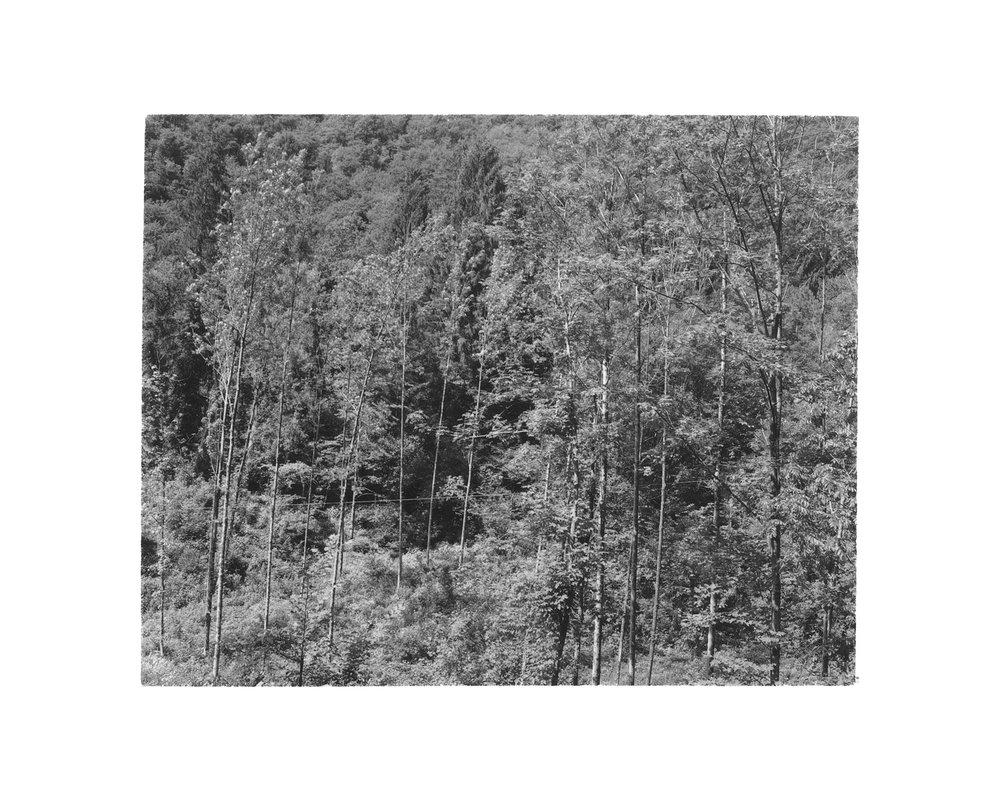 mountains print scan web 0009.jpg