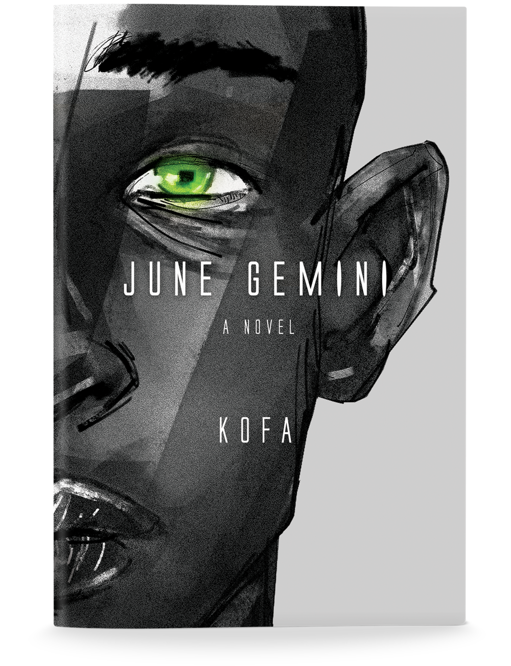 june_gemini_novel.png
