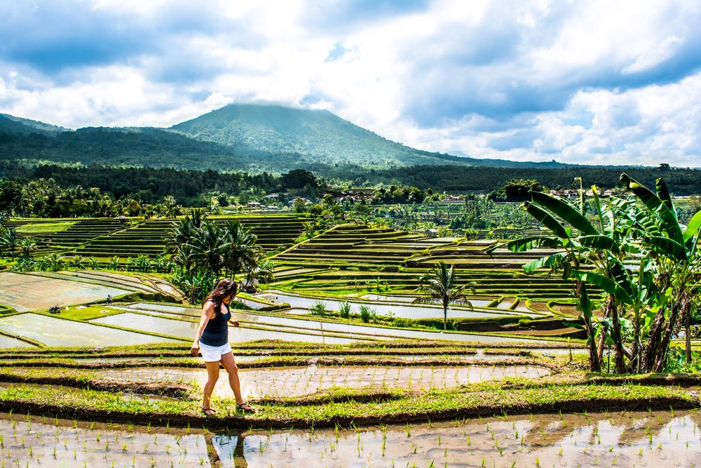 Walking through Tegalalang Rice Terrace in Bali