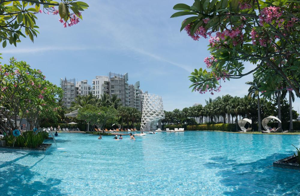 The massive pool at The W Singapore Sentosa Island