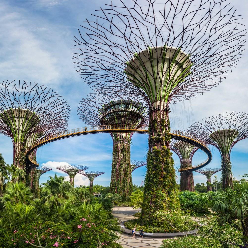 Gardens by the bay a futuristic garden in singapore no destinations - Garden by the bay flower show ...