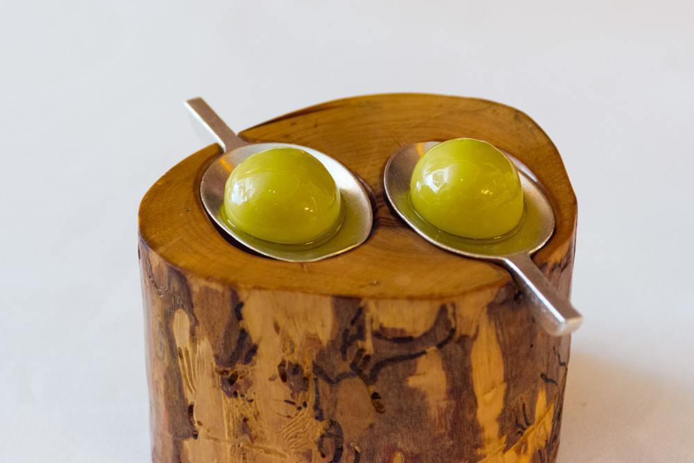 It looks like an olive, feels like an olive, and even tastes like an olive -- but its not an olive.