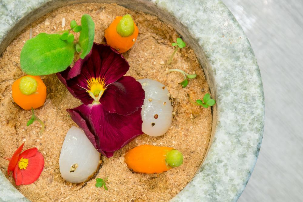 The Jade on 36 Garden! An edible flower pot.
