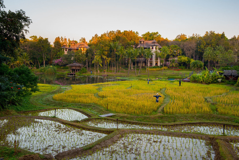 Completley surrounded by nature at Four Seasons Chiang Mai