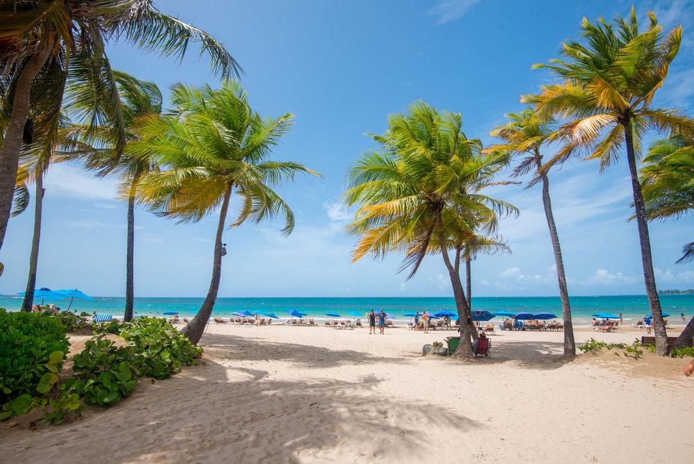 The beach at The Ritz-Carlton, San Juan