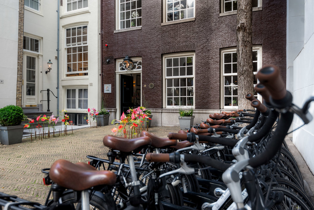 Grab a bike and explore Amsterdam