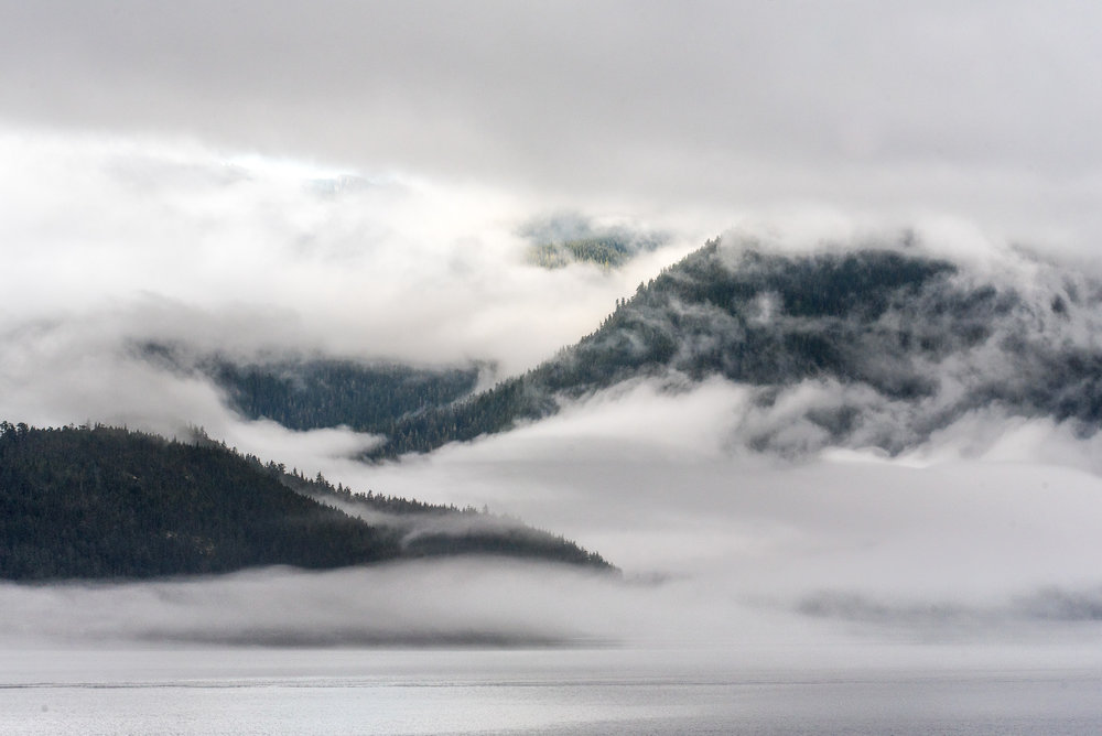 Foggy mornings in the Inside Passage