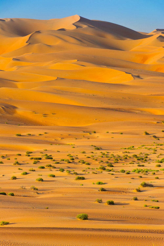 Abu_Dhabi-Web-399-20151125.jpg
