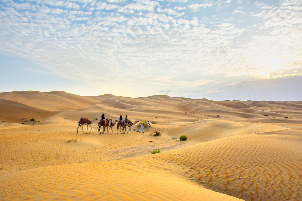 Riding camels through the deserts of the United Arab Emirates