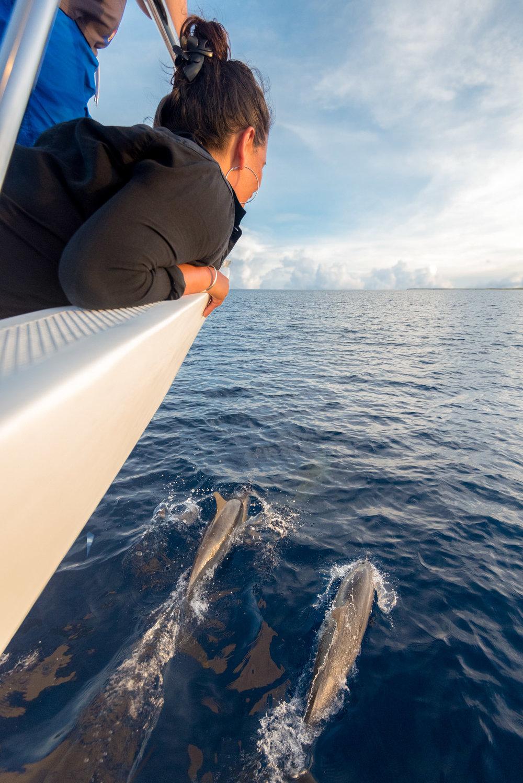 Maldives_Soneva-Jani-223-20170513.jpg