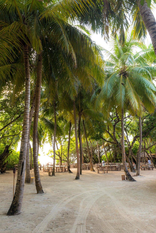 Maldives_Soneva_Fushi-149-20170512.jpg