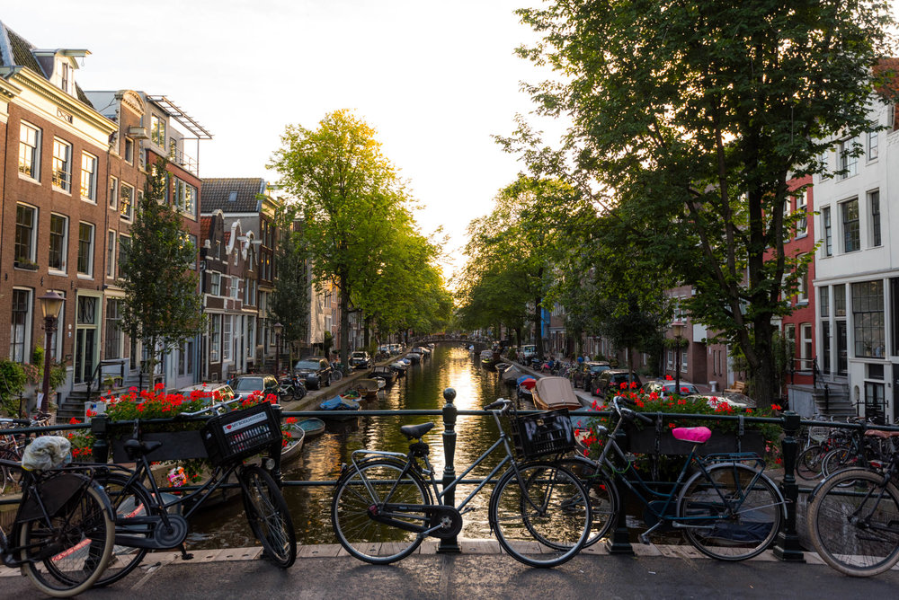 Amsterdam-Web-527-20160901.jpg