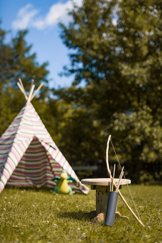 høst-høstfoto-høstfotografering--2.jpg
