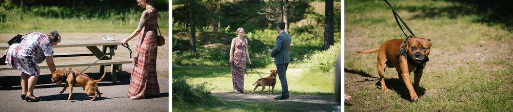 bryllup-bryllupsfotografering-bryllupsfotograf-sarpsborg-20170617-_H2A1785anneli_phillip_WEB.jpg