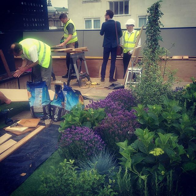 Work in progress photos of a roof garden in Liverpool #landscape #roofgardens #landscapearchitecture #design