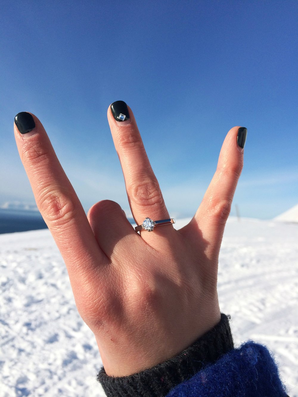 Proposal at Svalbard, Artic circle