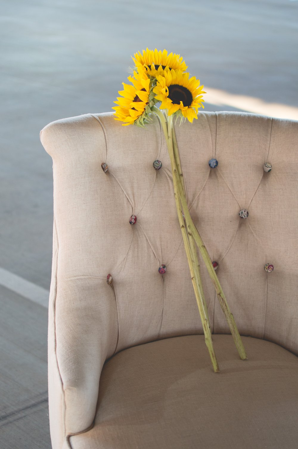 Beige Chair with Yellow Sun Flower