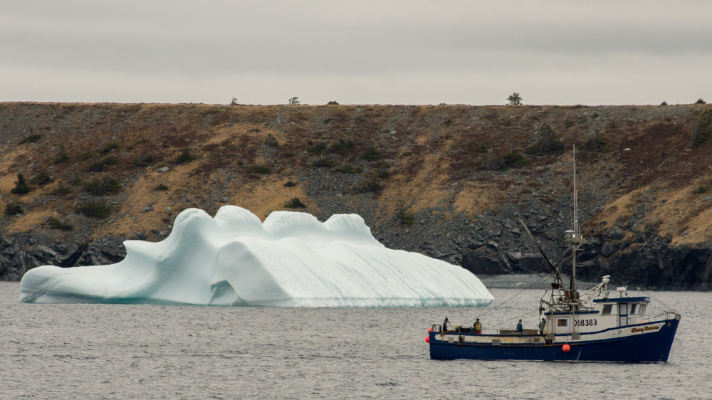 I can't fathom passing by those beautiful icebergs every single day