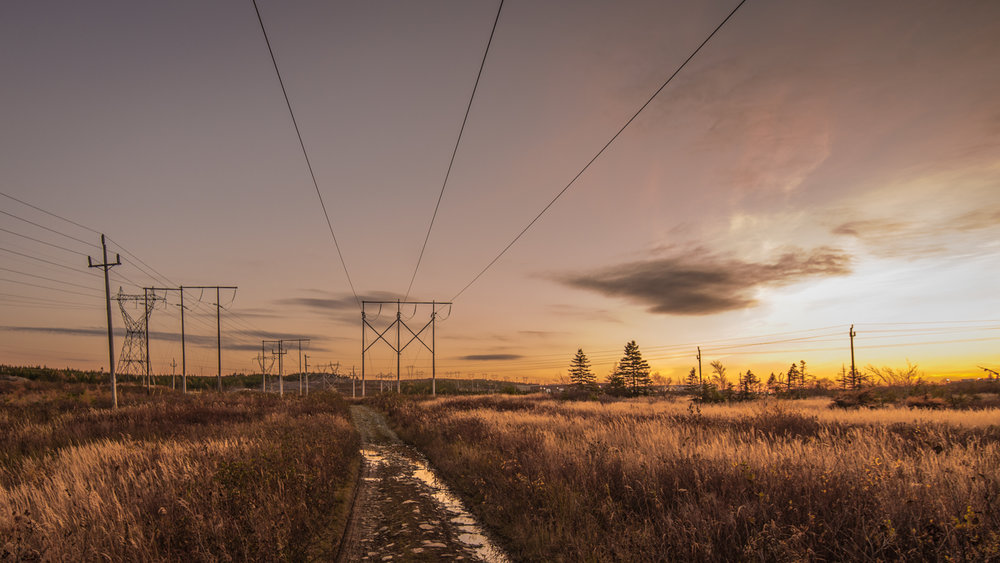 Nov 2 - Powerlines-2.jpg