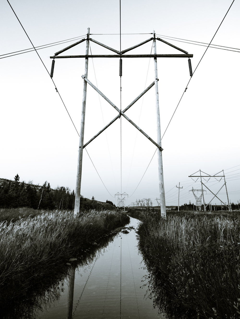 Nov 2 - Powerlines-4.jpg