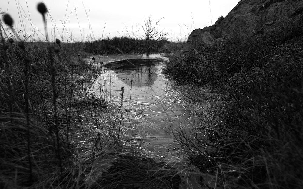 Dec17 - Signal Hill-12.jpg