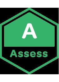 Assess.png