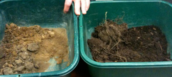 Soil on the right has a high organic content, evidenced by its dark color.