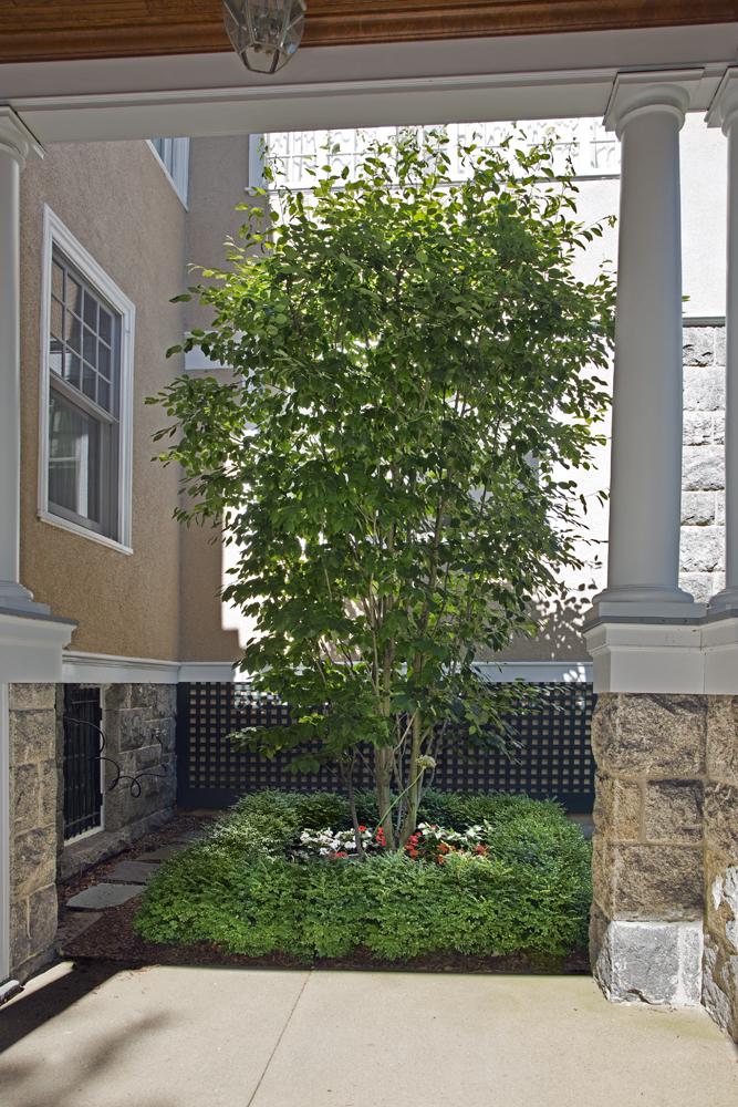 2-Victorian-porte-cochere-planting.jpg