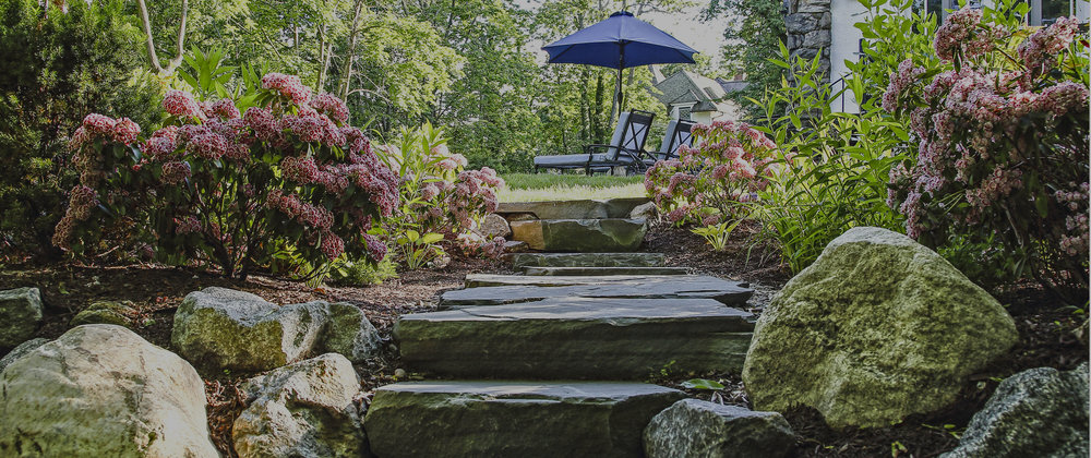 High-style, low maintenance landscape design