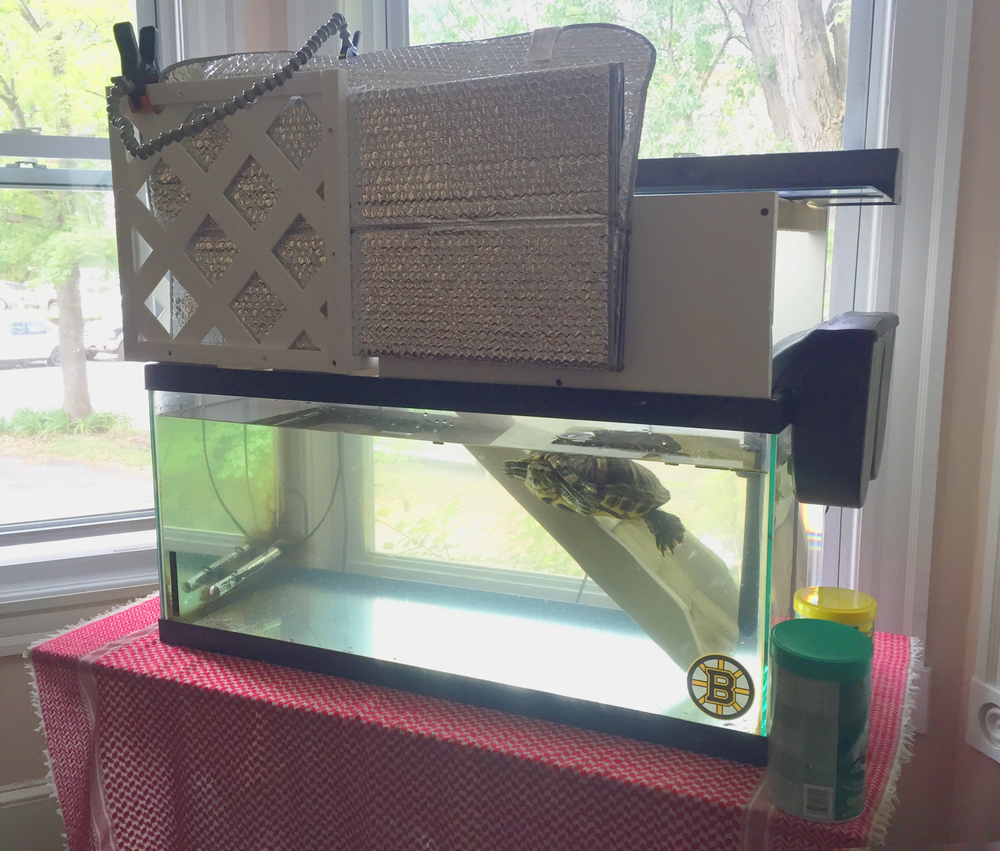 The new configuration for Sandy the Turtle