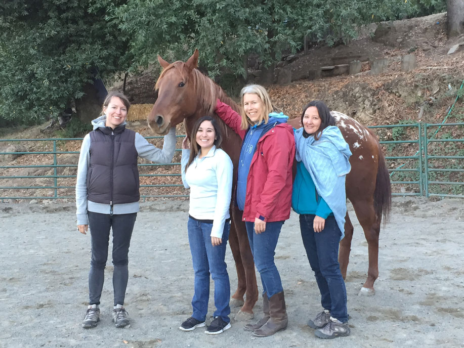Group-with-horse.jpg
