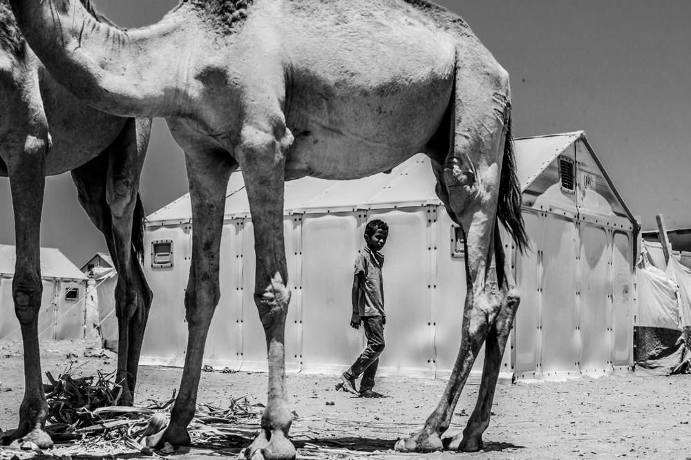 """IN A CAMEL FRAMEWORK, MARKAZI REFUGEE CAMP, DJIBOUTI"" BY EDUARDO LOPEZ MORENO"