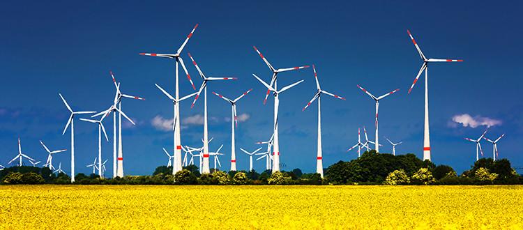 wind farms 1.jpg