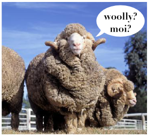 Woolly rams