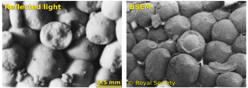 Reflected light photomicrograph (left) and backscatter scanning electron microscope image (right) of Ketton Stone. Adapted from figures 2 and 3 of Hull (1997). Images are © Royal Society and used in accordance with their terms.