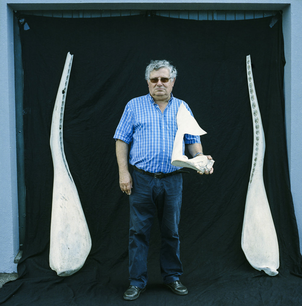Manuel Alves Gonçalves, former banker and native of the island of Pico, has been promoting the lost art of Azorean  Scrimshaw,  the carving of the jaw bone and teeth of the whale, for the last 26 years.