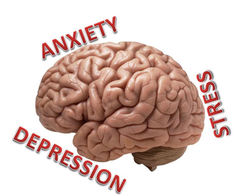 Natural Treatment for Anxiety & Depression Without Drugs — Enliven ...
