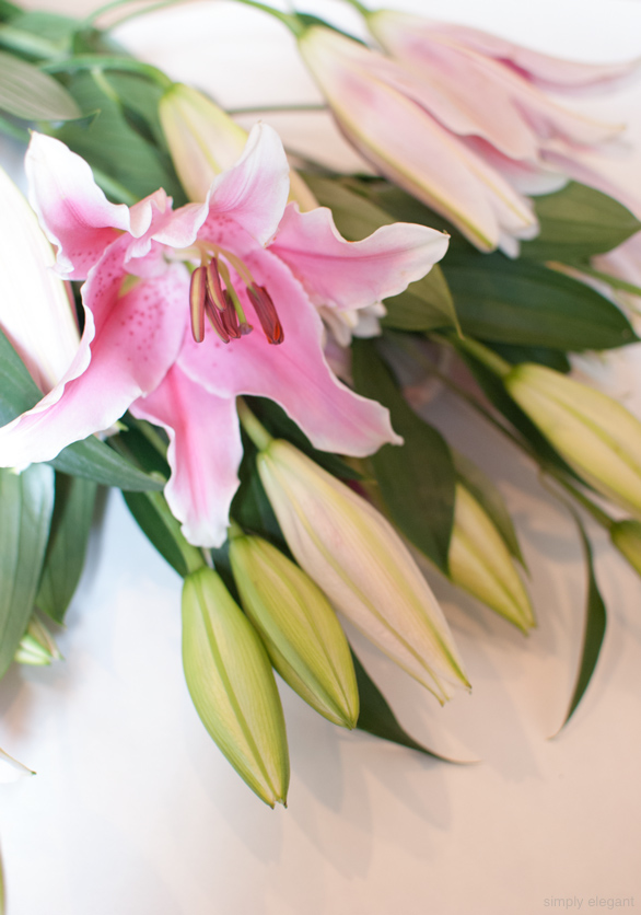 Lilies Flowers, Pink Lily, Fresh Flowers, Blogger Photography,