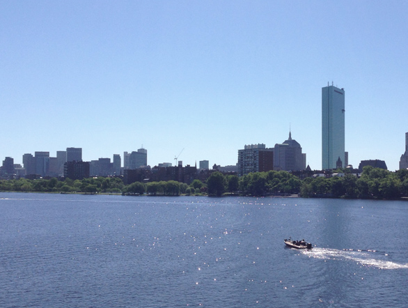 View of Boston, boston ocean and charles river, summer in boston