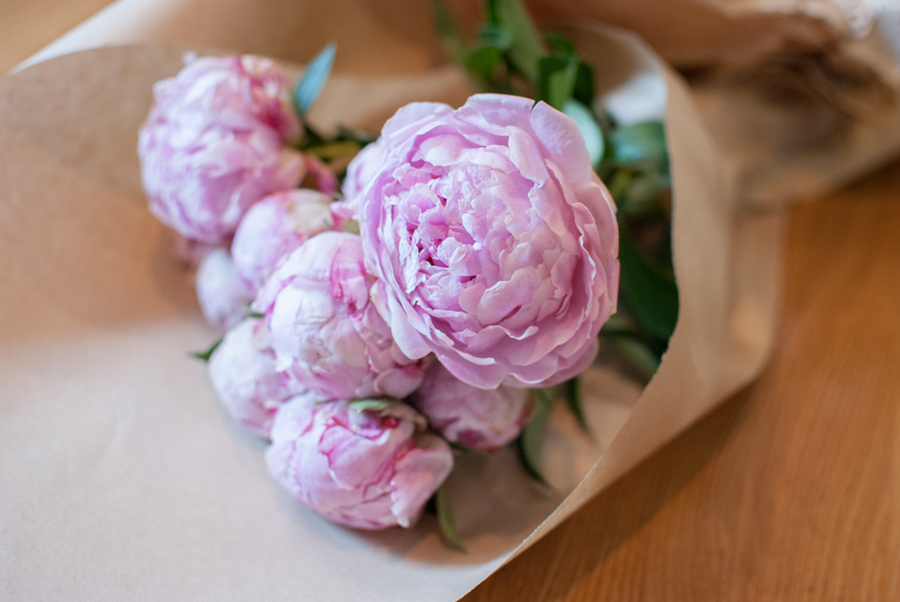 Peony Photography, Pink Peonies, Blog Photography, Flower Photography