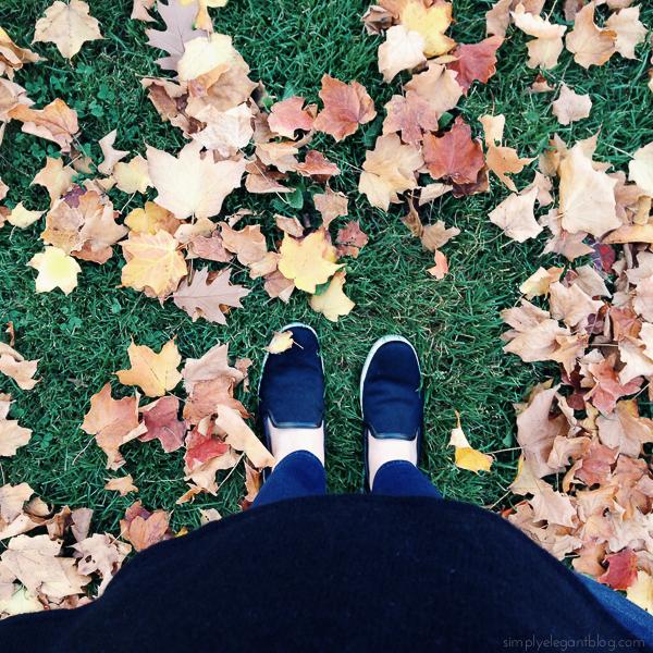 november_instagrams-1