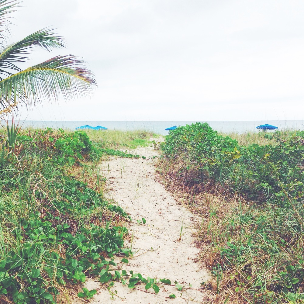 Perfect  path  to  the  beach