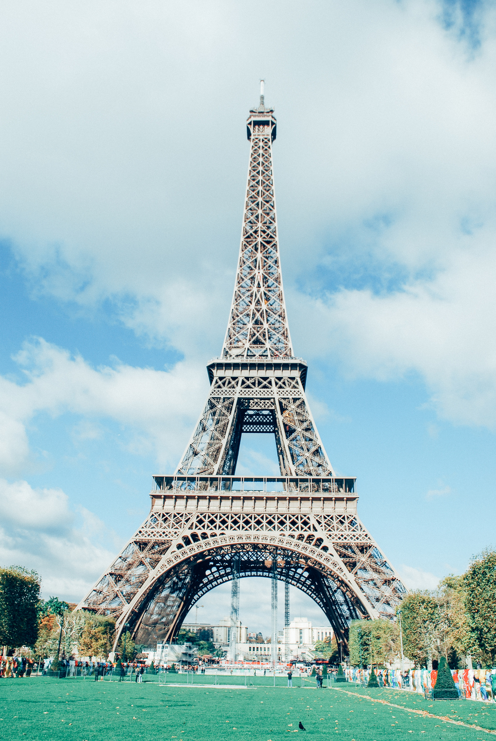 Paris_Eiffel_Tower_Simply_Elegant