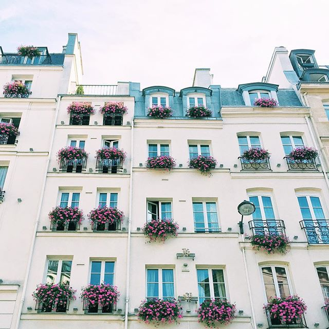Simply Elegant // Paris Streets and Windowboxes