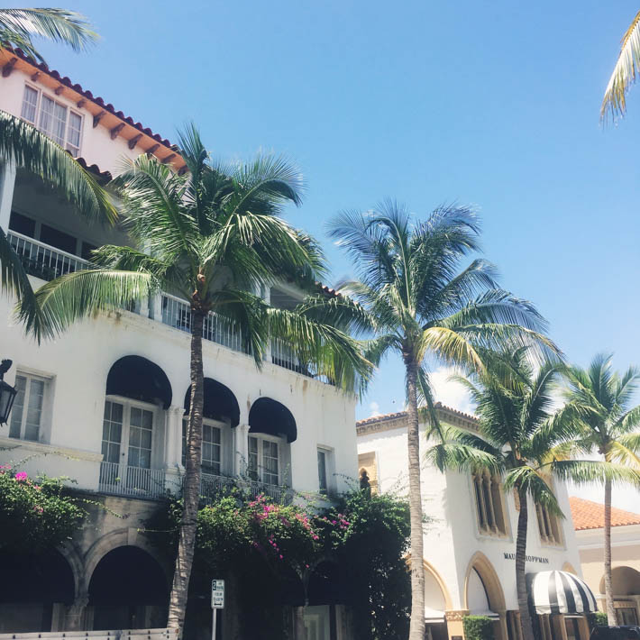 worth avenue, palm beach